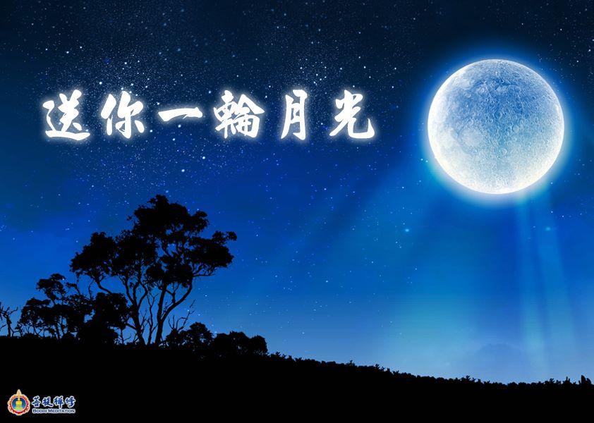 金菩提禪師 送你一輪月光